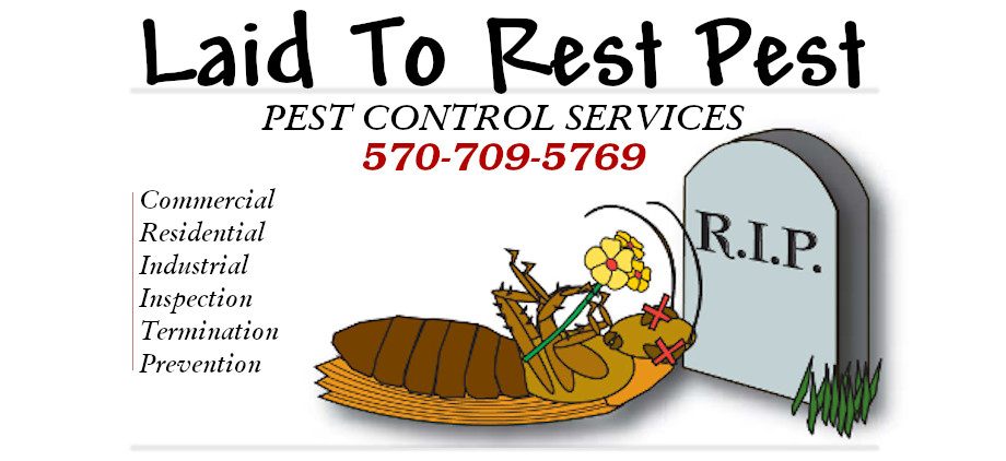 Laid To Rest Pest Control